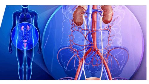 urologist treatment